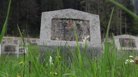 Militar cemetery 18 Footage