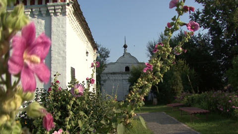 Flower Garden In The Churchyard stock footage