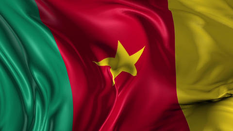Flag of Cameroon Animation