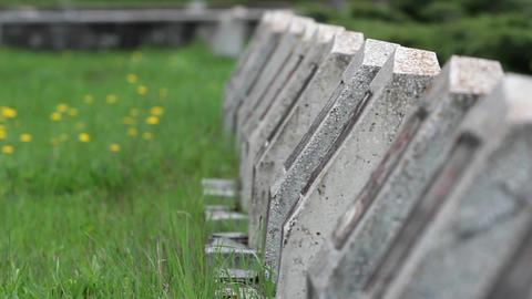 Militar cemetery 10 Footage