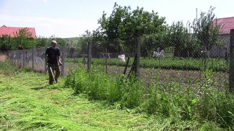 Gardener mowing grass 01 Footage
