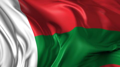 Flag of Madagascar Animation