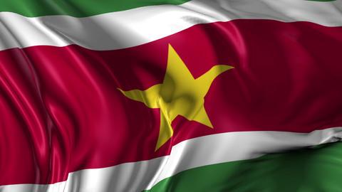 Flag of Suriname Animation