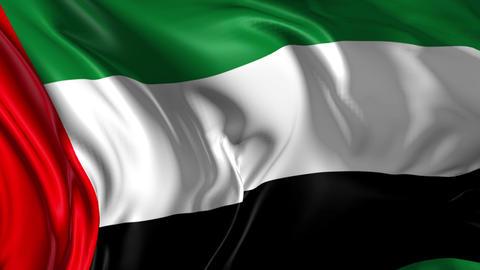 Flag of United Arab Emirates Animation