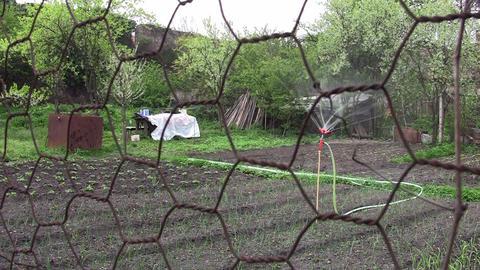 Installation of irrigation in vegetable garden 04 Footage