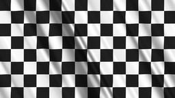 Finish Flag Loop 01 Stock Video Footage