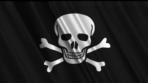 Pirate Flag Loop 01 Stock Video Footage