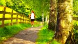 Seniors Relaxing Walking 02 stock footage
