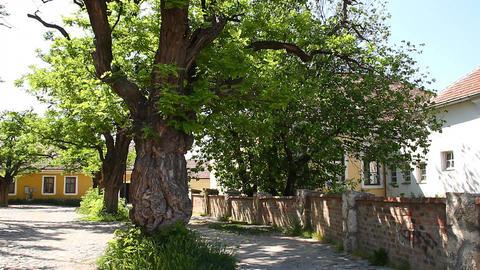 Old European Village 28 Stock Video Footage