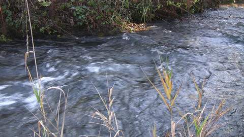 Mountain river - nat.-sound Stock Video Footage