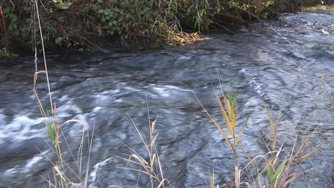 Mountain river - nat.-sound Footage