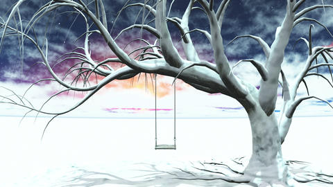 Winter Tree Stock Video Footage