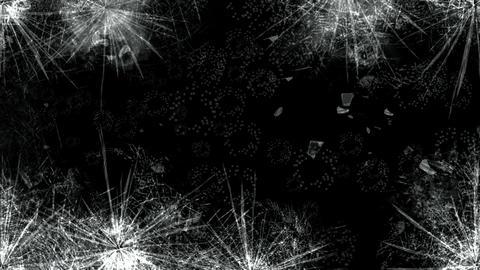 Broken glass Animation