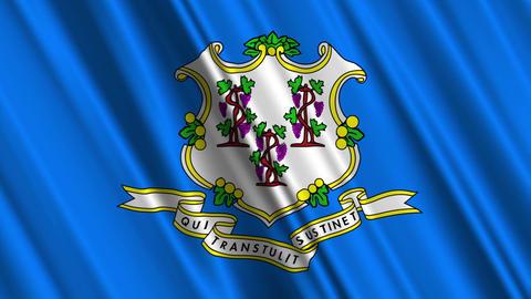 Connecticut Flag Loop 01 Animation