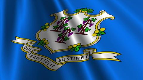 Connecticut Flag Loop 03 Stock Video Footage