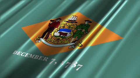 Delaware Flag Loop 02 Stock Video Footage