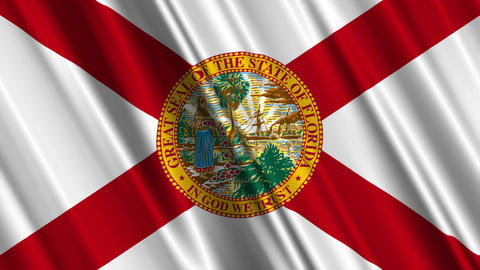Florida Flag Loop 01 Stock Video Footage