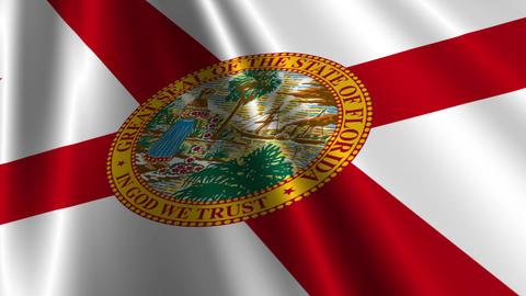 Florida Flag Loop 03 Stock Video Footage