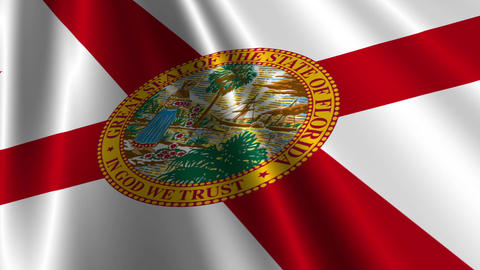 Florida Flag Loop 03 Animation