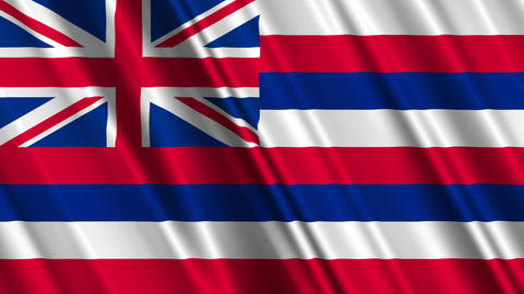 Hawaii Flag Loop 01 Stock Video Footage