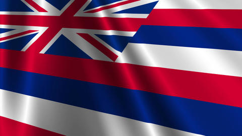 Hawaii Flag Loop 03 Stock Video Footage