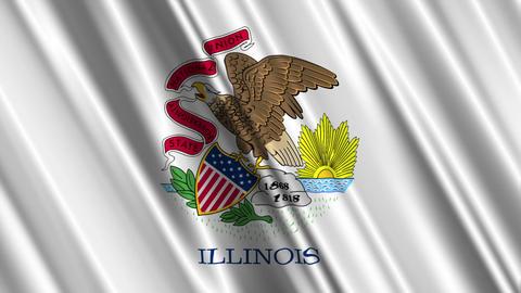Illinois Flag Loop 01 Stock Video Footage