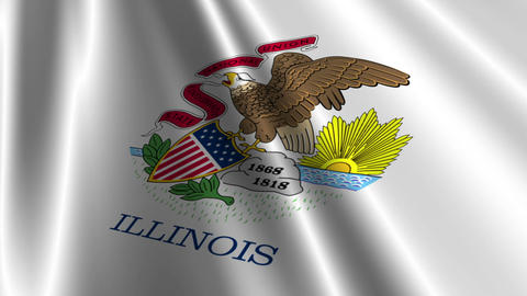 Illinois Flag Loop 03 Stock Video Footage