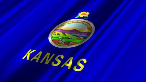 Kansas Flag Loop 02 Stock Video Footage