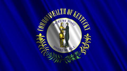 Kentucky Flag Loop 01 Stock Video Footage