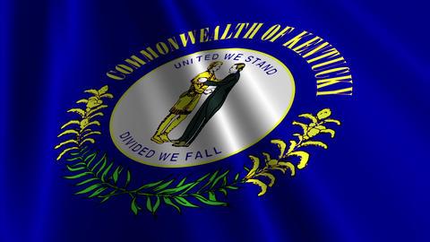 Kentucky Flag Loop 03 Stock Video Footage