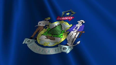 Maine Flag Loop 03 Stock Video Footage