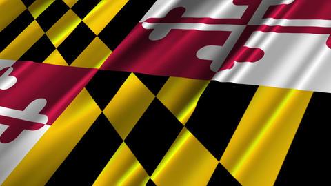 Maryland Flag Loop 02 Stock Video Footage