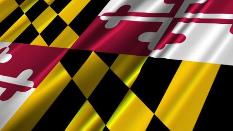 Maryland Flag Loop 02 Animation