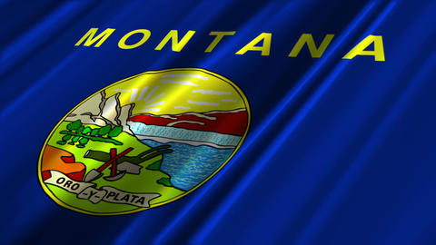Montana Flag Loop 02 Stock Video Footage
