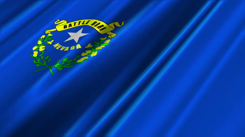Nevada Flag Loop 02 Stock Video Footage