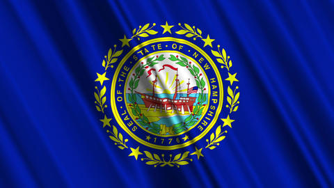 New Hampshire Flag Loop 01 Stock Video Footage