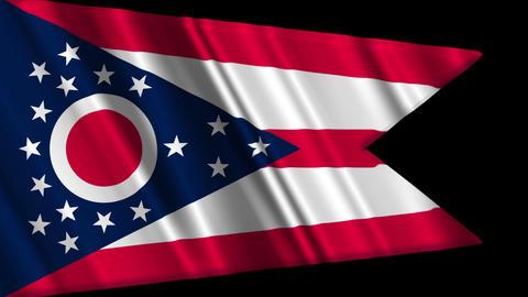Ohio Flag Loop 01 Stock Video Footage