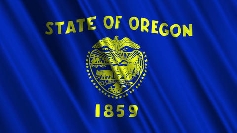 Oregon Flag Loop 01 Stock Video Footage