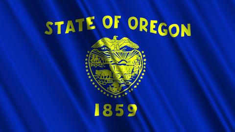 Oregon Flag Loop 01 Stock Video Footage