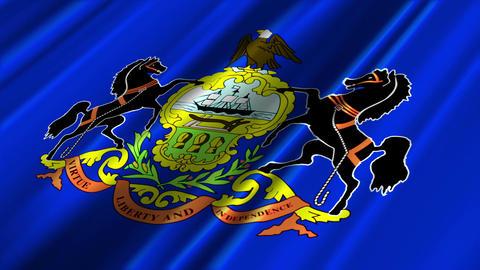 Pennsylvania Flag Loop 02 Stock Video Footage