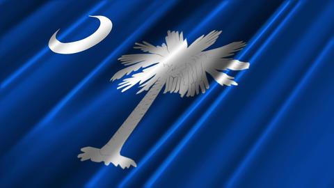 South Carolina Flag Loop 02 Stock Video Footage