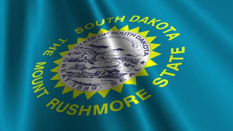 South Dakota Flag Loop 03 Stock Video Footage
