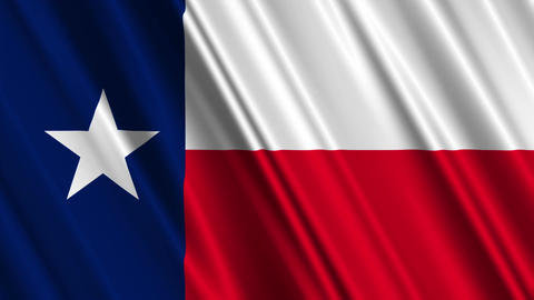 Texas Flag Loop 01 Stock Video Footage