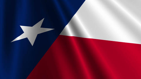 Texas Flag Loop 03 Stock Video Footage