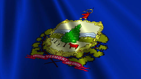 Vermont Flag Loop 03 Stock Video Footage