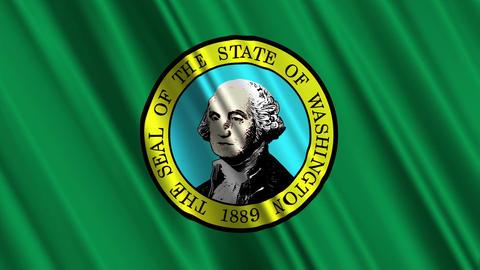 Washington Flag Loop 01 Stock Video Footage