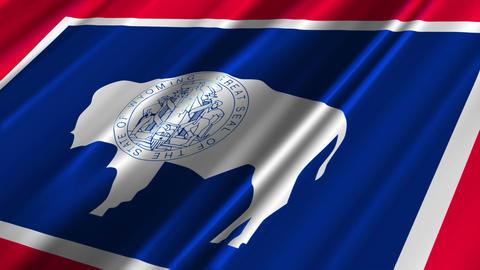 Wyoming Flag Loop 02 Stock Video Footage