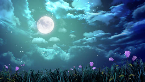 night moon and flowers Stock Video Footage