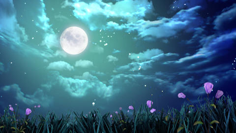 night moon and flowers Animation