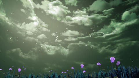 flowers and sky Animation